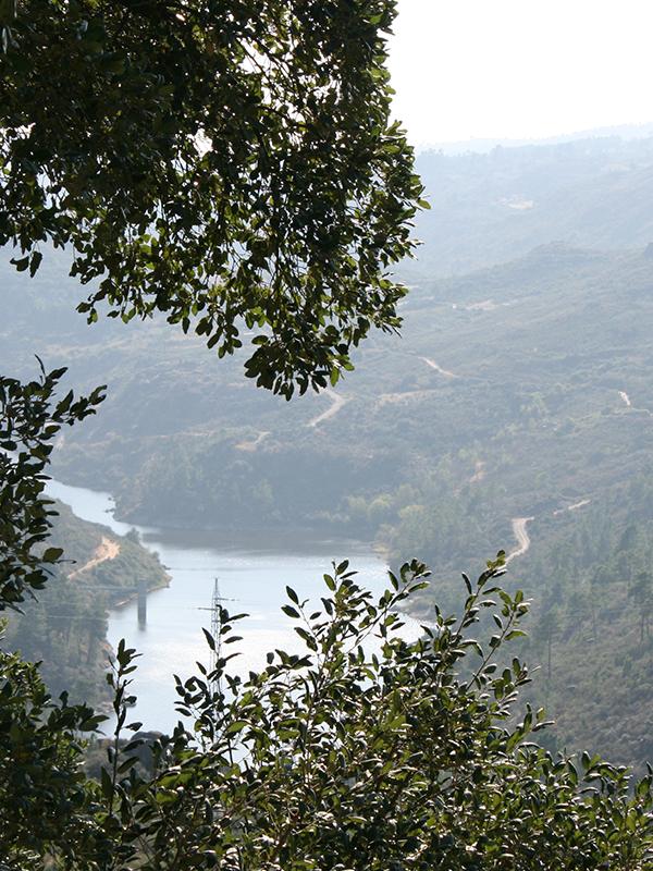 rio-rabacal-sonim